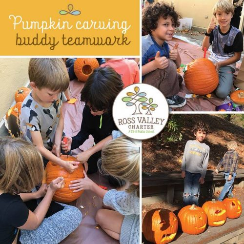 """Image depicting: Ross Valley Charter """"buddy families"""" have a child from each grade level who get together every week. The buddy families worked together to design and carve their pumpkins on Halloween."""
