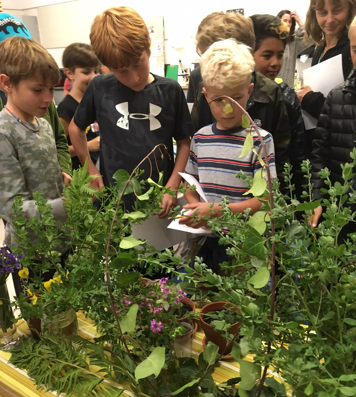 Students in Marin pictured with plants for their study into plant growth
