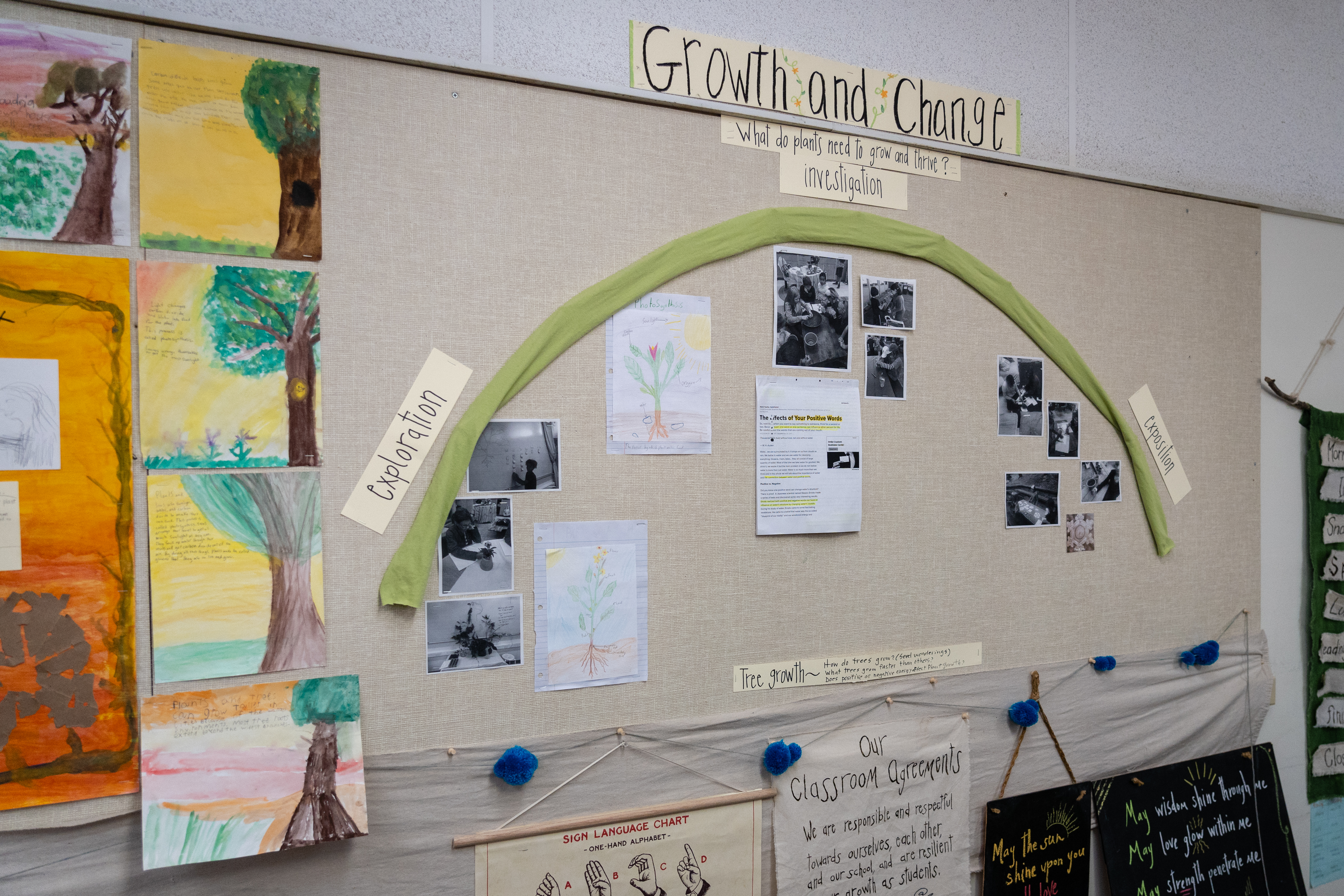 A bulletin board with the three phases of inquiry around plant growth